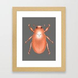 Copper Beetle Framed Art Print
