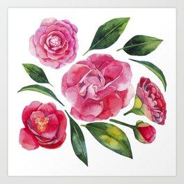 Watercolor camellia Art Print