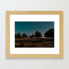 Night Framed Art Print