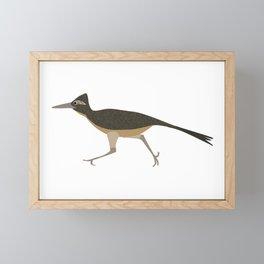 Roadrunner Framed Mini Art Print