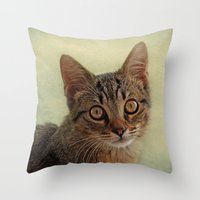 kitten Throw Pillows featuring kitten by lucyliu