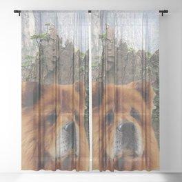 Dog Chow Chow Sheer Curtain