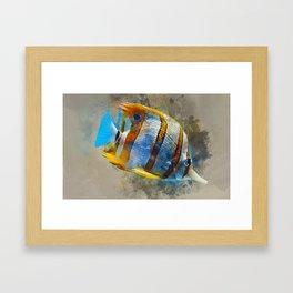 Copperband Butterfly Marine Fish Framed Art Print