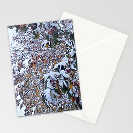Snow on Fall Leaves 2 Stationery Cards