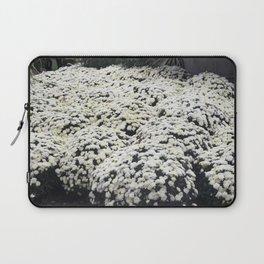Longwood Gardens Autumn Series 28 Laptop Sleeve