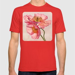 Like Light through Silk - peach / pink translucent poppy floral T-shirt