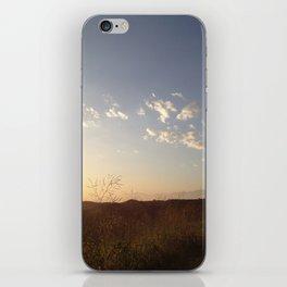 Hiking Whittier iPhone Skin