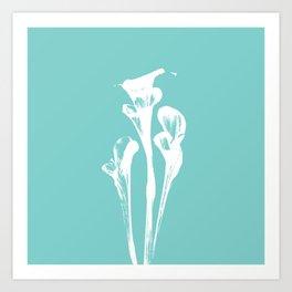 Calla Lily - Aqua Art Print