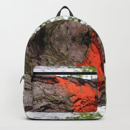 Mirror, Mirror in The Woods Backpack