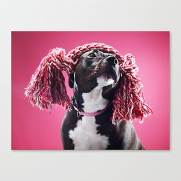 Super Pets Series 1 - Raggedy Lucy Canvas Print
