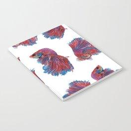 Ocean Theme- Red Blue Betta Fish Notebook
