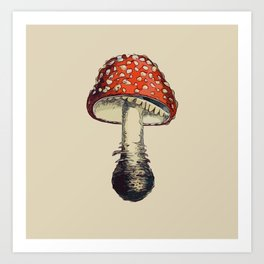 Fly Amanita Art Print