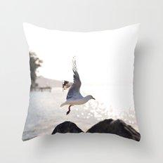Seagull takes flight over Dunedin's MacAndrew Bay Throw Pillow