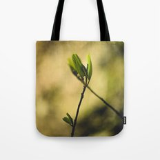 Spring at Nesmith Point Tote Bag