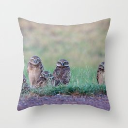Baby Burrowing Owls Throw Pillow