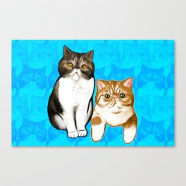 Puffy and Caesar  Canvas Print