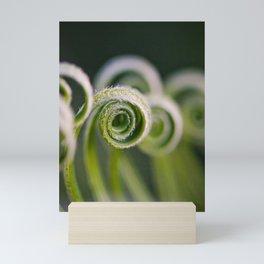 Curly Mini Art Print
