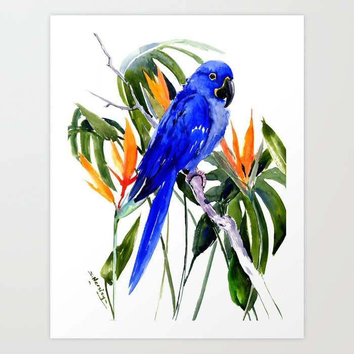 Hyacinth Macaw, Tropical colors foliage, jungle paradise flowers blue orange jungle colors Art Print