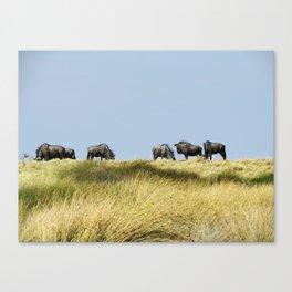 Wildebeest on the Horizon Canvas Print