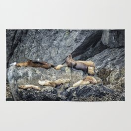 Group of Female Sea Lions and Young Rug