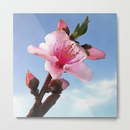 Artistic Peach Blossom Flower In Dawn Light  Metal Print