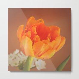 Romantic Flower Tulip Metal Print