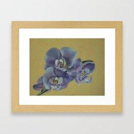 Purple Orchids Framed Art Print
