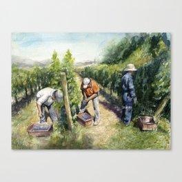 Vineyard Watercolor Landscape Wine Grapes Nature Canvas Print