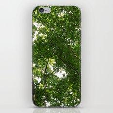 look up 04 iPhone & iPod Skin