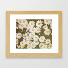 Retro Daisies Framed Art Print