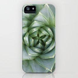 Succulent Spiral iPhone Case