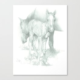 """THE YEARLING"" Canvas Print"
