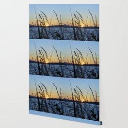 Sunset Sea Grass Wallpaper