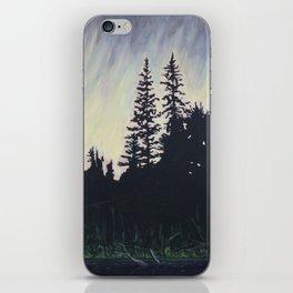 After the Storm – Evening, Algonquin Park iPhone Skin