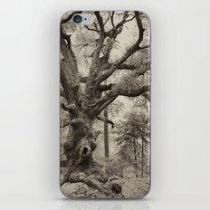 Old Oak Dark  iPhone & iPod Skin