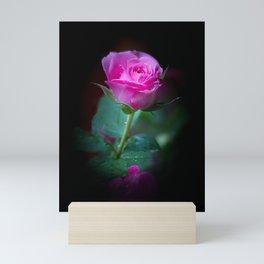 Wet Pink Rose Mini Art Print