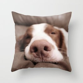 Funny Dog Photography Brittany Spaniel Close Up  Throw Pillow