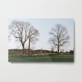 Trees and barns at sunset, above Matlock. Derbyshire, UK. Metal Print