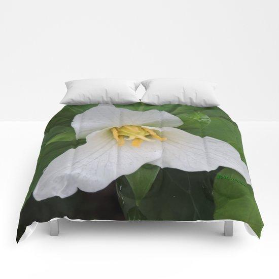 Trillium in the Rain Comforters