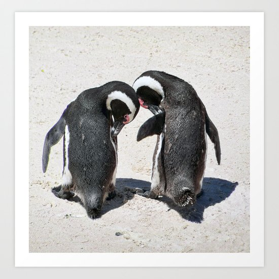 Penguins of Boulder Beach Art Print