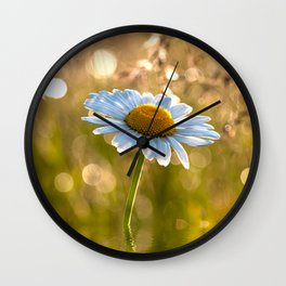 Floral Daisy Flower Flowers in a meadow after rain Wall Clock