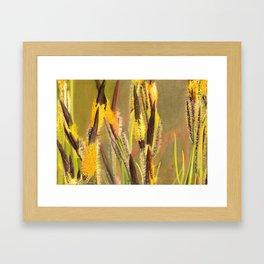 GLOWING GRASS Framed Art Print