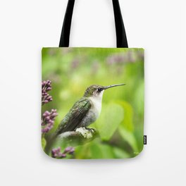 Hummingbird with Lilacs Tote Bag