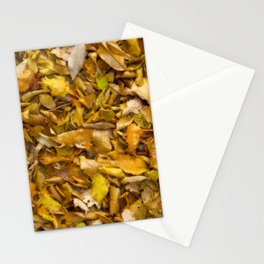 Autumnal Leaves Stationery Cards