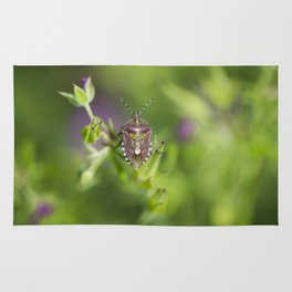 Spring bug Rug