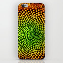 Sunflower Seeds iPhone Skin