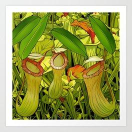 Carnivorous Pitcher Plant Art Print