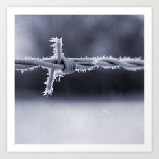 Frosted Barbed Wire Art Print