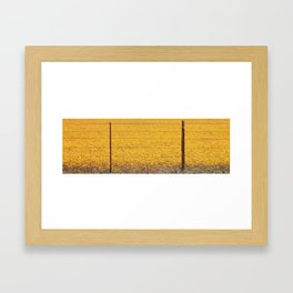 Daisies Behind Fence Framed Art Print