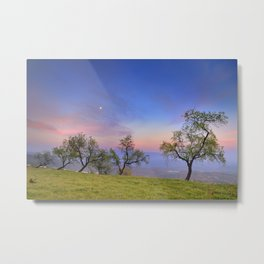 Almonds and Moon Metal Print